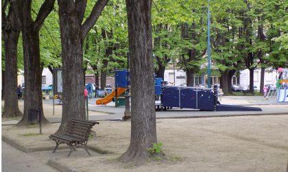 Allarme zecche ai giardini di piazza Mazzini