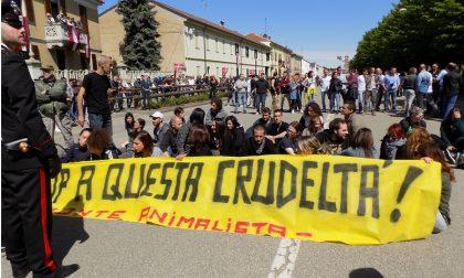 Gli animalisti denunciano Riva Vercellotti e sindaco