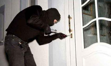 """Pubblica foto di """"presunti"""" ladri su Facebook. Denunciato per procurato allarme."""