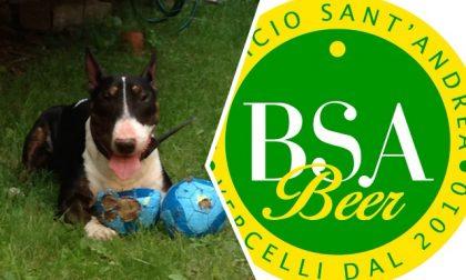 Un aperitivo per il canile di Borgo Vercelli