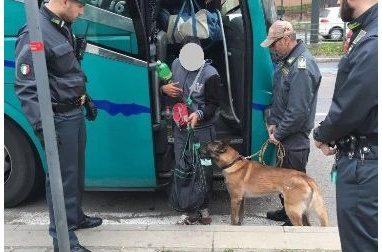 Nella valigia 5 kg di droga: arrestato