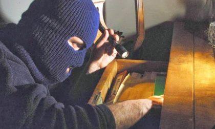 Presi tre ladri con 17 furti all'attivo