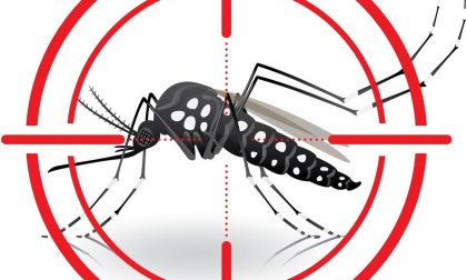 Vercelli: cominciata la guerra alle zanzare