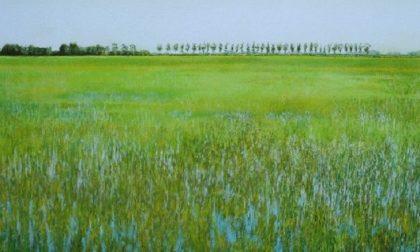Il Comune stanga i furbetti delle risaie