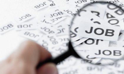 """""""Ricomincio il lavoro"""": inserimento professionale per 45 persone"""