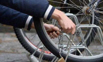 TRINO: Presi due ladri di biciclette