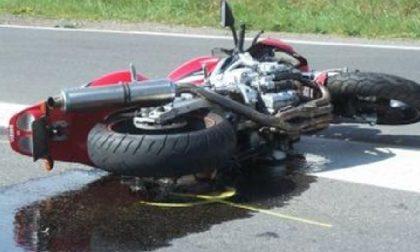 CRONACA: Motociclista contro un palo per schivare un gatto