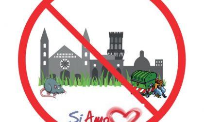 """VERCELLI: Sabato Gazebo dei """"Siamo"""" per la class action"""