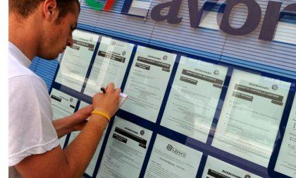 Offerte lavoro: nuove richieste