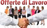 Offerte lavoro: Asl Vercelli offre tre posti