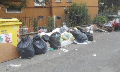 VERCELLI: Ripulita la discarica in via Zambeccari