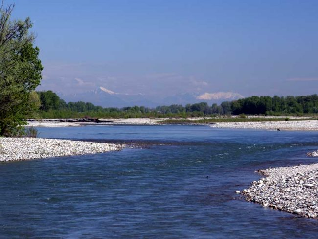 Fiume Sesia inquinamento e poca acqua