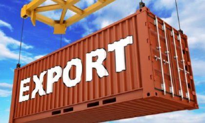 Export in provincia di Vercelli e Novara: -5% a inizio anno