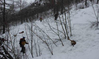 Simulazione valanga in alta valle per i soccorritori