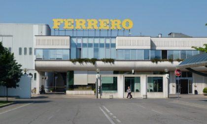 Assaggiatori di cacao cercasi per lavorare in Ferrero