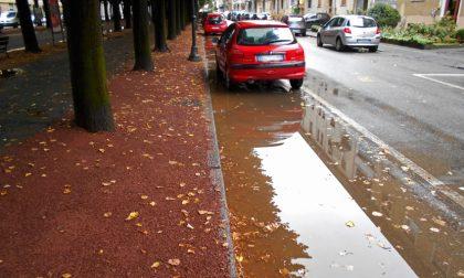 Viale Rimembranza allagato dopo la pioggia