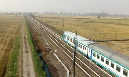 Treno investe cavallo sulla Torino-Milano. Fantino in ospedale