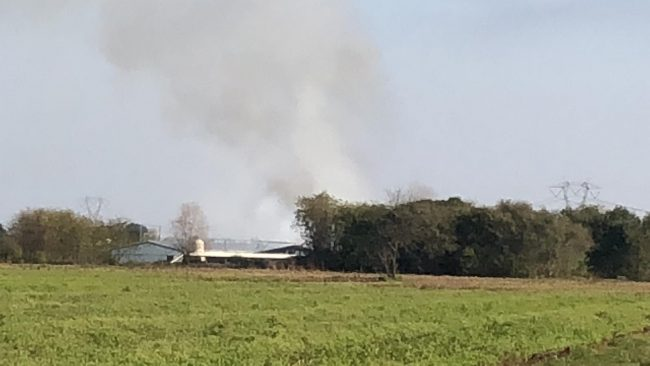 Incendio distrugge un allevamento di polli FOTO e VIDEO
