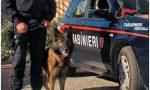 Carabinieri a scuola contro lo spaccio di droga