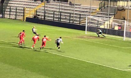 KO Pro Vercelli: battuta 2-1 ad Alessandria