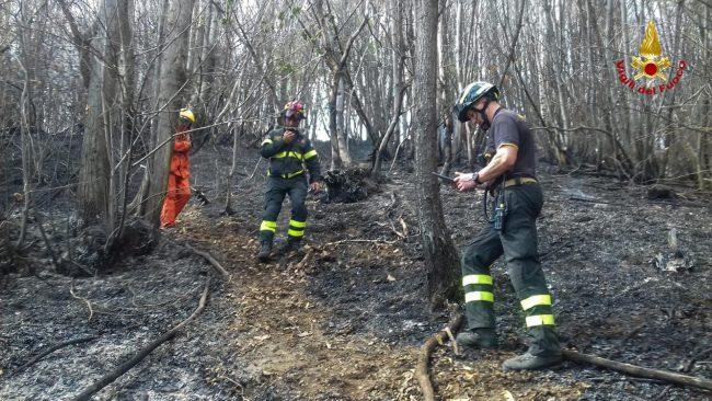 Domato rapidamente l&#8217&#x3B;incendio in Valsesia