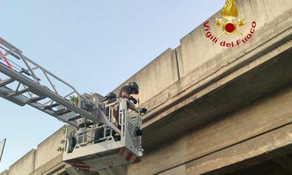 Cavalcaferrovia Belvedere: intervenuti i Vigili del Fuoco per distacco calcinacci