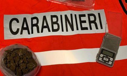 Pusher arrestato dai Carabinieri a Gattinara
