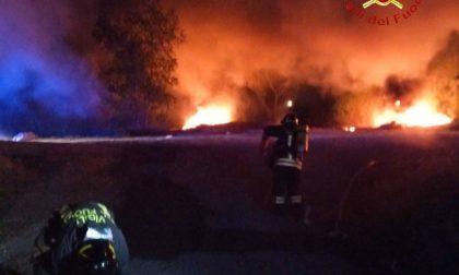 Due incendi nella notte lungo l'argine del Sesia