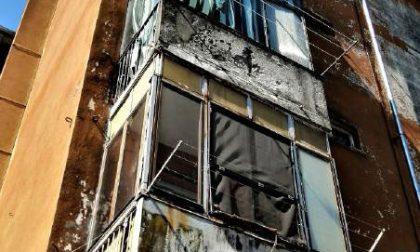 Via Palli, situazione di degrado: topi e auto abbandonate