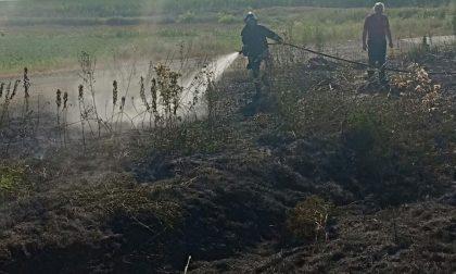Sterpaglie in fiamme ad Alice Castello intervengono i Vigili del Fuoco di Santhià
