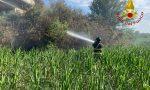 Doppio intervento dei Vigili del Fuoco per incendio sterpaglie