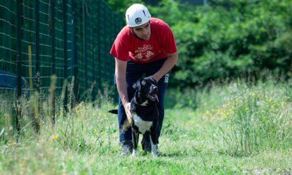 Mondiali Cani di Soccorso: selezioni a cura dei volontari di Palazzolo