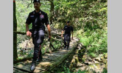 Nei boschi a caccia di ossa umane