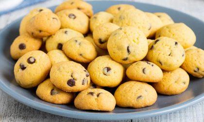Biscotti al cioccolato, ideali per la colazione