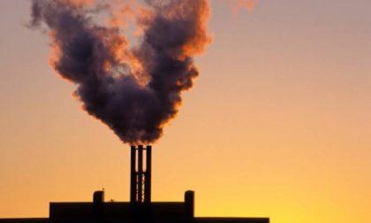 Stecco rassicura: nessun inceneritore a Vercelli