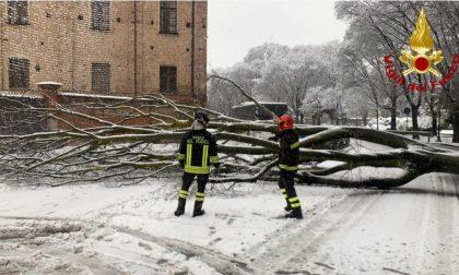 La nevicata: tanti danni per un evento normale