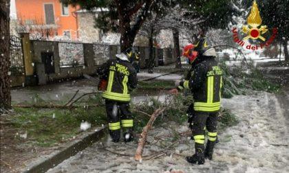 Quaranta interventi per i danni della neve