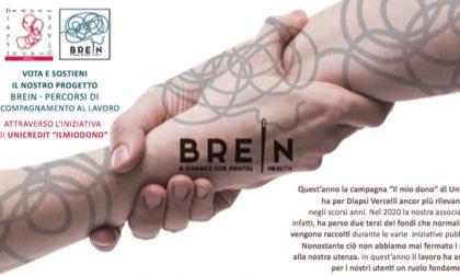 Diapsi Vercelli: Un dono per ripartire