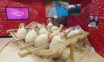 Museo Archeologico: tour virtuale nella Vercelli Romana