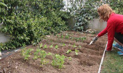 Per curare l'orto sì a spostamenti anche fra regioni