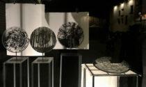 Dantedì: la selva oscura di Daniela Fontanesi in vetrina a Studio 10
