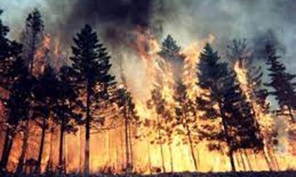 La Regione revoca lo stato di massima pericolosità degli incendi boschivi