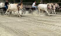 Cascina Varalla vince la corsa dei buoi di Asigliano