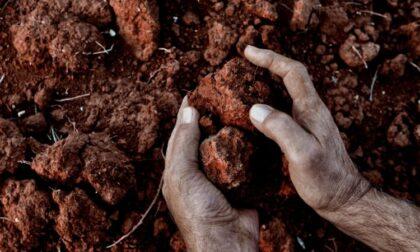 Bando per giovani agricoltori: oltre 45 milioni di euro