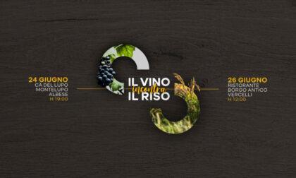 Nascono le Rice&Wine Tasting Experience: il 24 e il 26 giugno nelle Langhe e a Vercelli