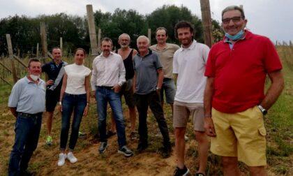 Un fronte comune a sostegno degli agricoltori vercellesi danneggiati dalla grandinata