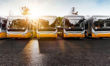 Tanti autobus datati in provincia: il report
