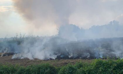 Tricerro: fiamme in un prato vicino al centro abitato
